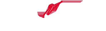 Logo_Geiger_und_Partner_negativ_klein